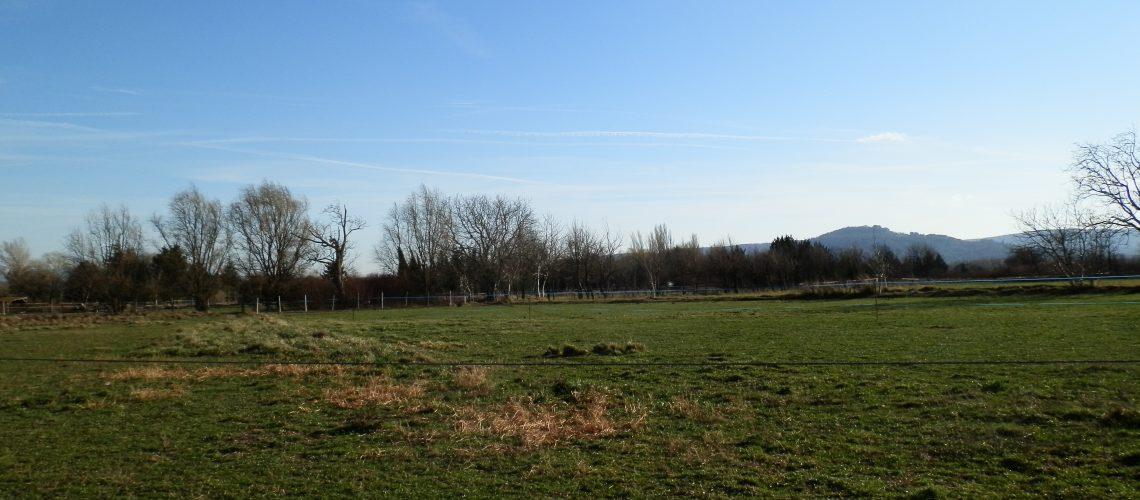 Image Villelaure, Beau terrain agricole de 3350 m²