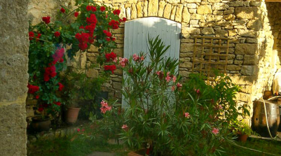 Vente maison provençale de 107m2 avec jardin, les Taillades - Effectimmo