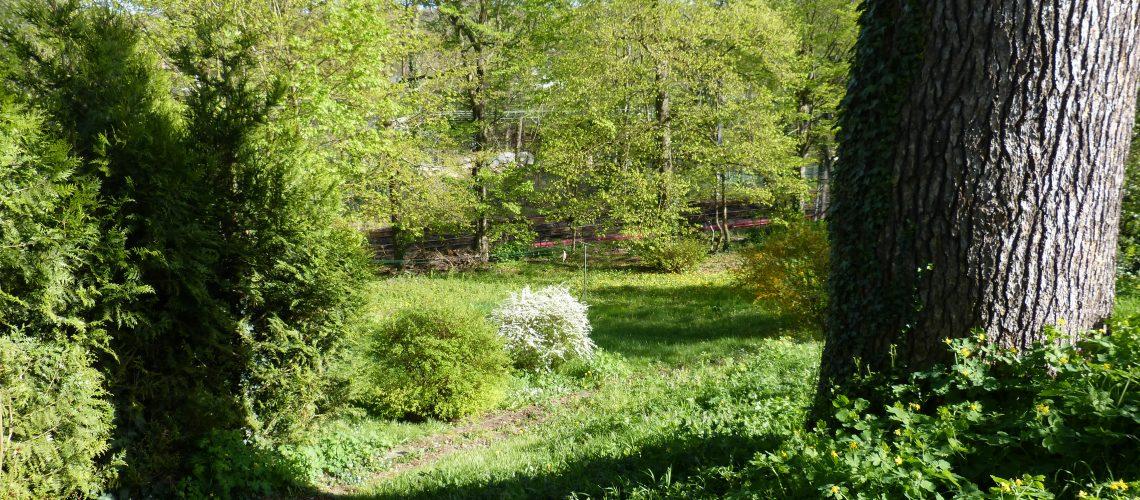 Image Le Coudray-Montceaux, Beau terrain constructible arboré de 943 m²