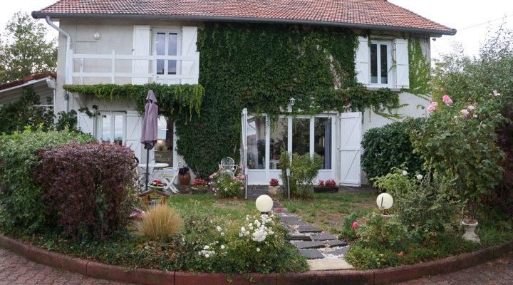 Proche Lezoux, Villa et pavillon séparé, piscine, dépendances sur grand terrain arboré