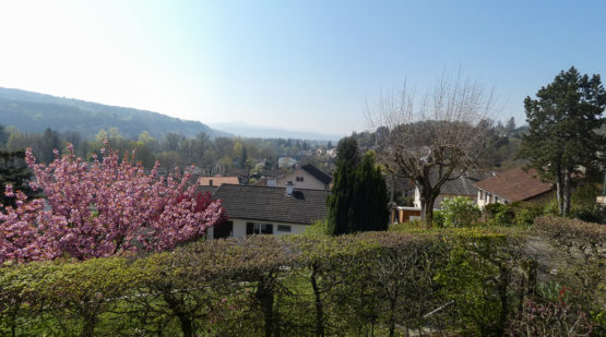 Vente maison rénovée de 112m2 avec vue Neuville-sur-ain - Effectimmo